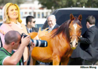 Romney a Horse in Latest Gaffe
